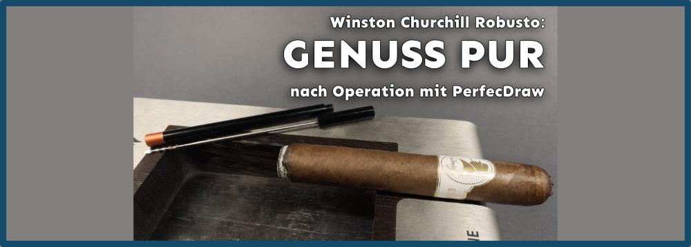 Davidoff Winston Churchill Robusto